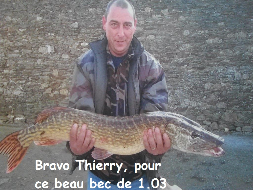 brochet-thierry