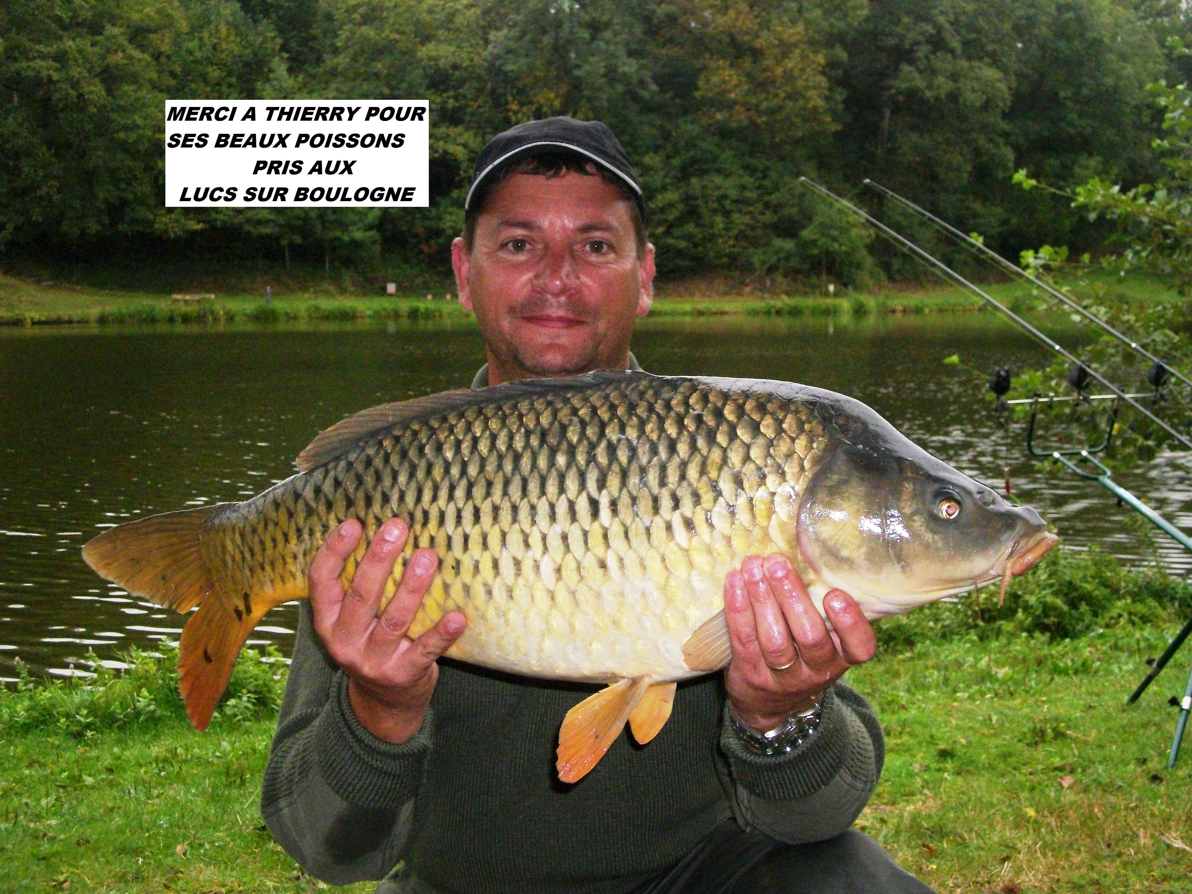 le-05-10-2012-les-lucs-carpe-de-8kg-10kg-8kg500-003