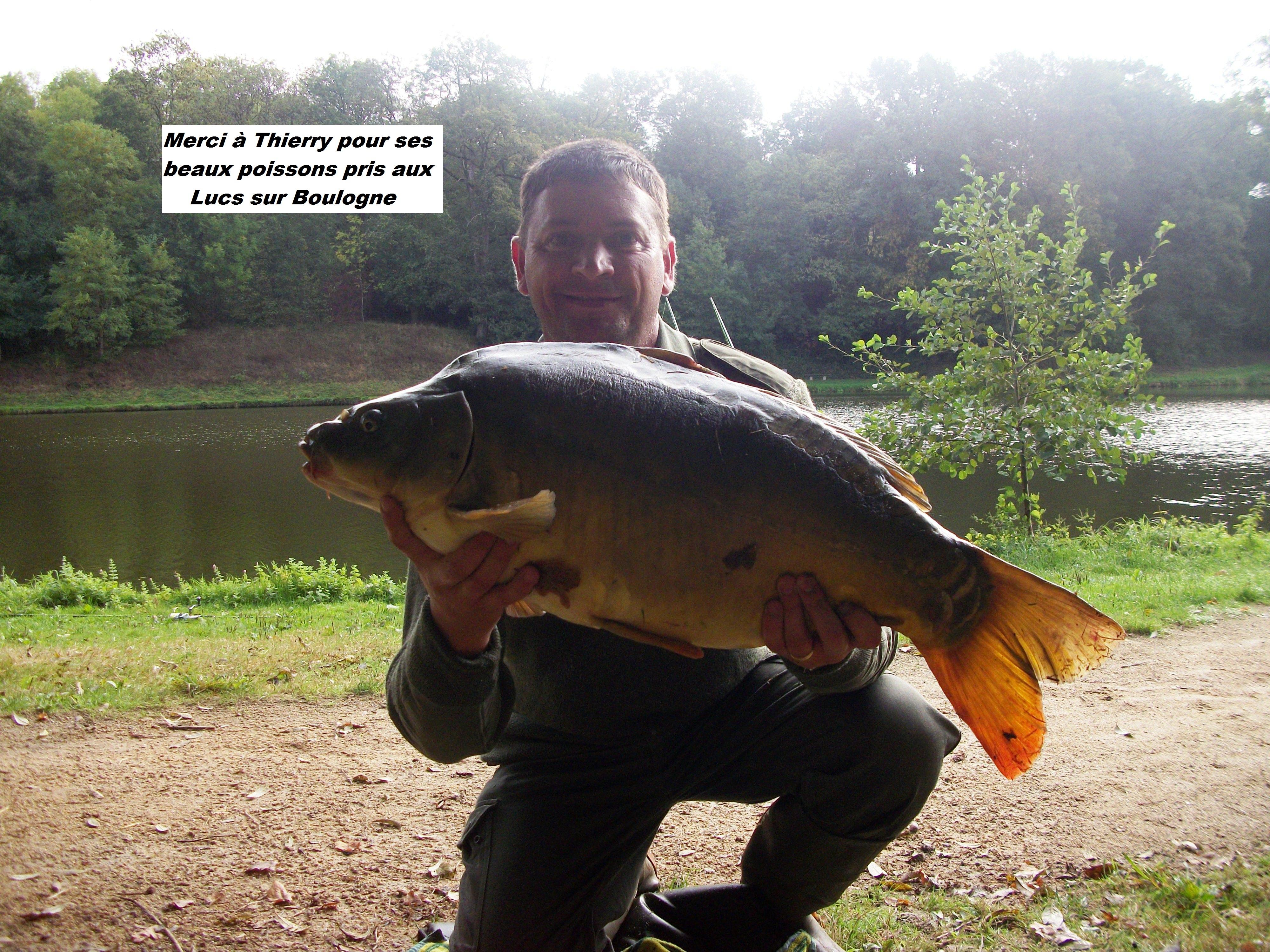 le-05-10-2012-les-lucs-carpe-de-8kg-10kg-8kg500-005