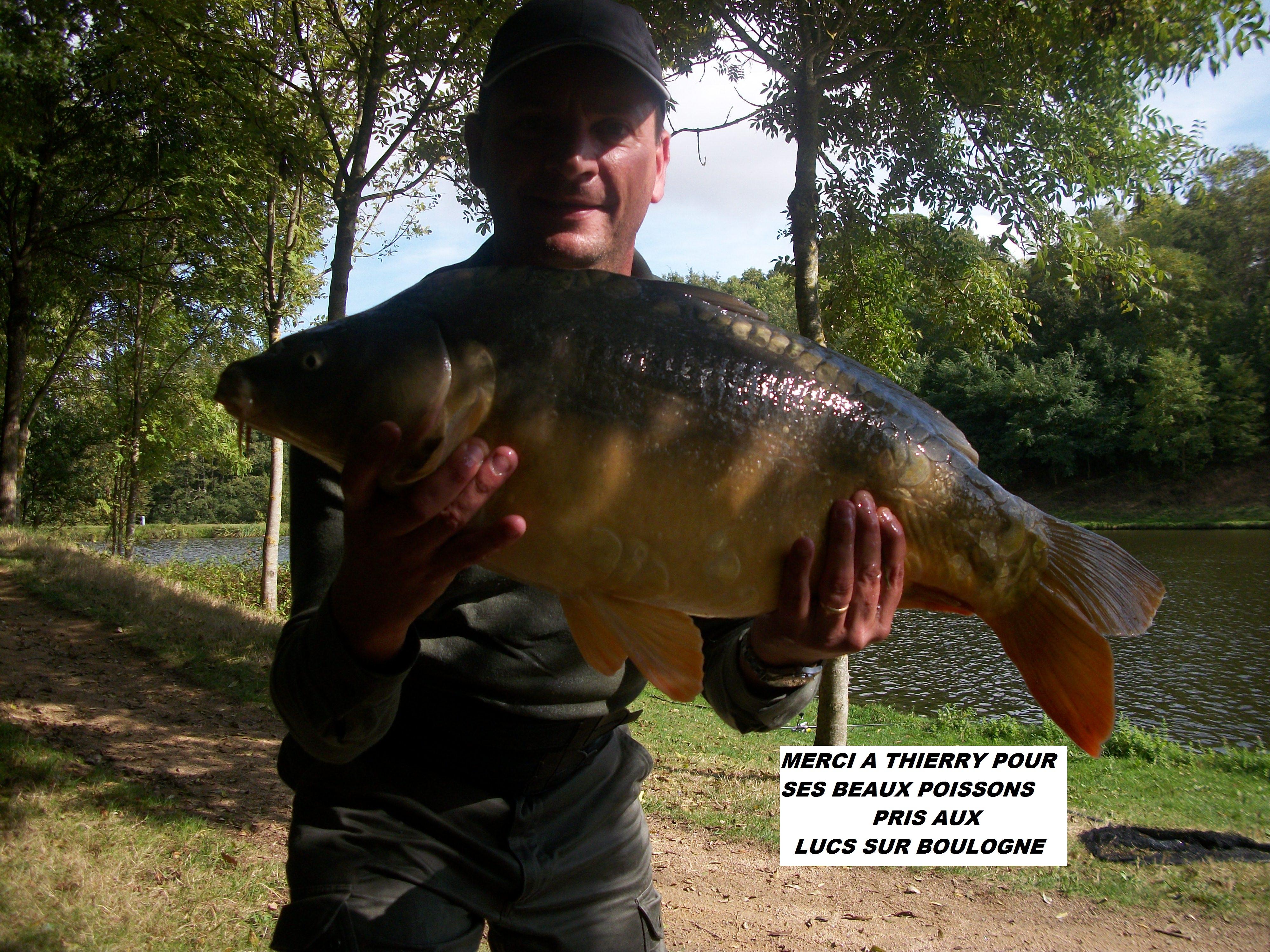 le-05-10-2012-les-lucs-carpe-de-8kg-10kg-8kg500-008